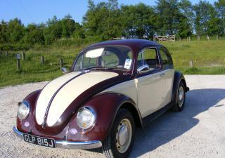 Volkswagen Beetle, GLP815J